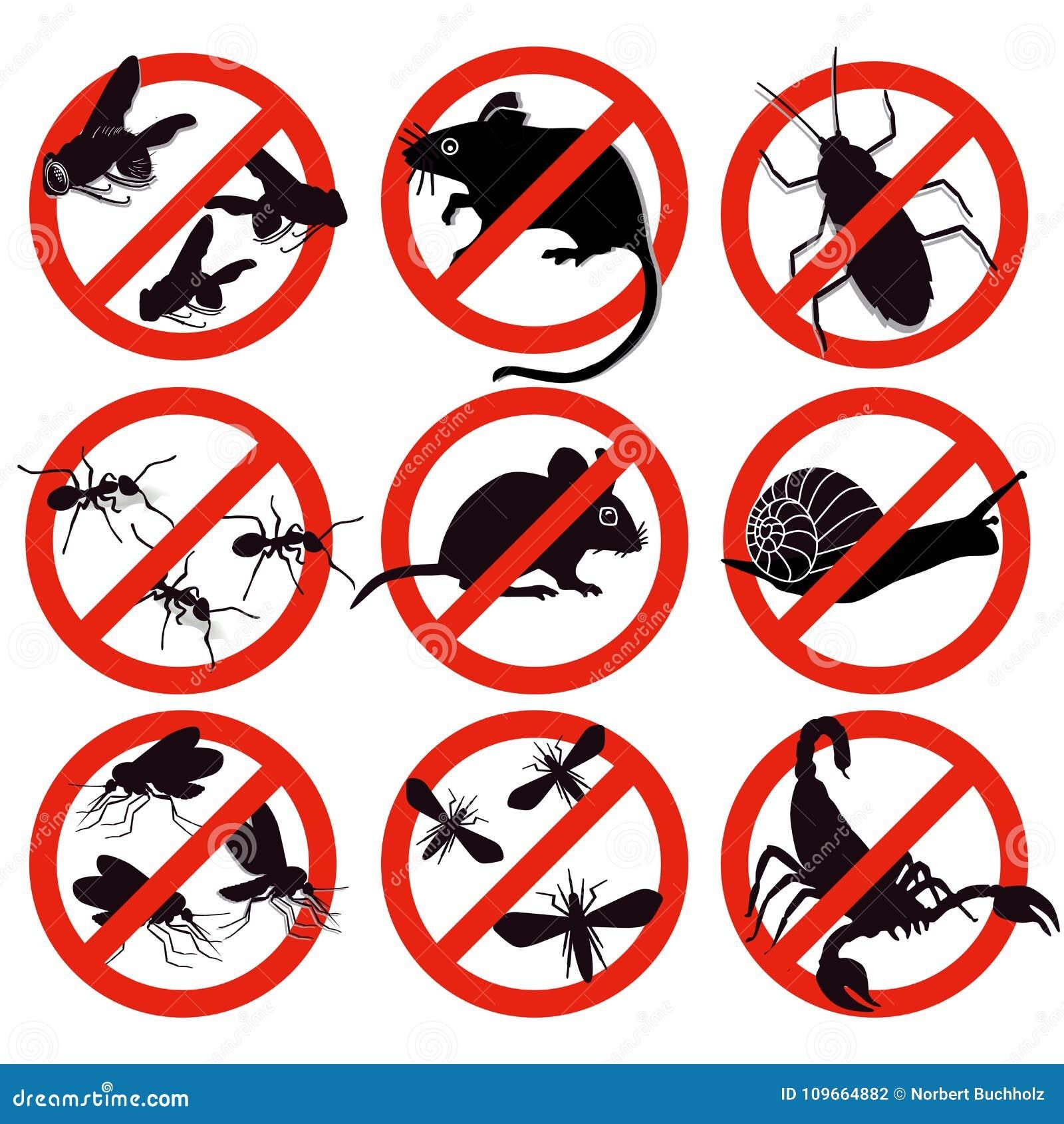 Control de los bichos y de parásito