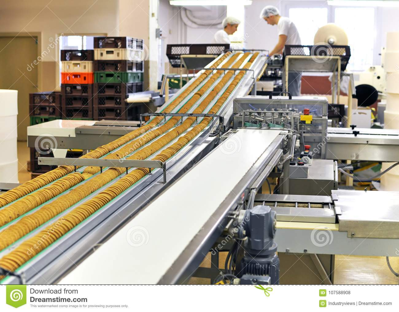 Conveyor belt with biscuits in a food factory - machinery equipm