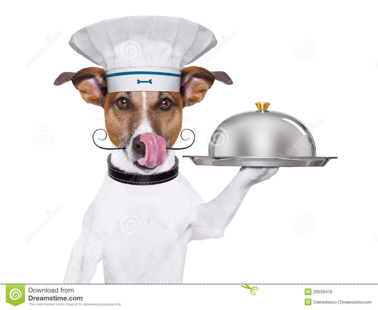 how to spell chef cook