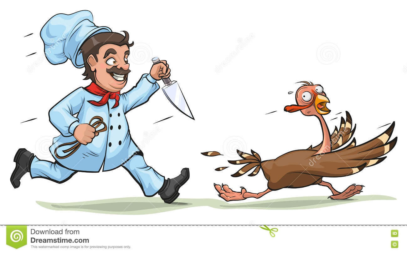 Cook With Knife Pursues Frightened Turkey. Fun Concept For
