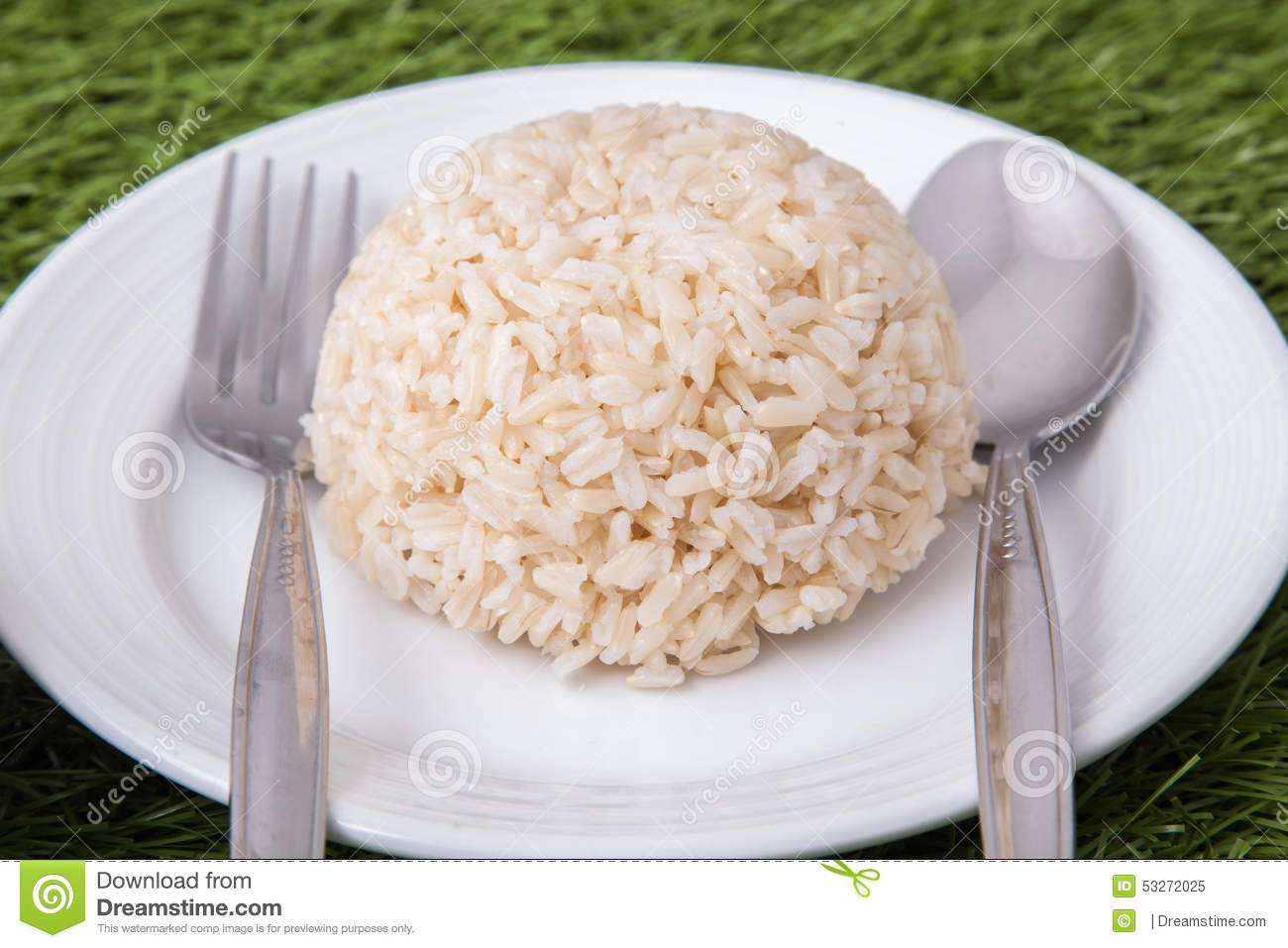 Cooked Jasmine Brown Rice Stock Photo Image: 53272025