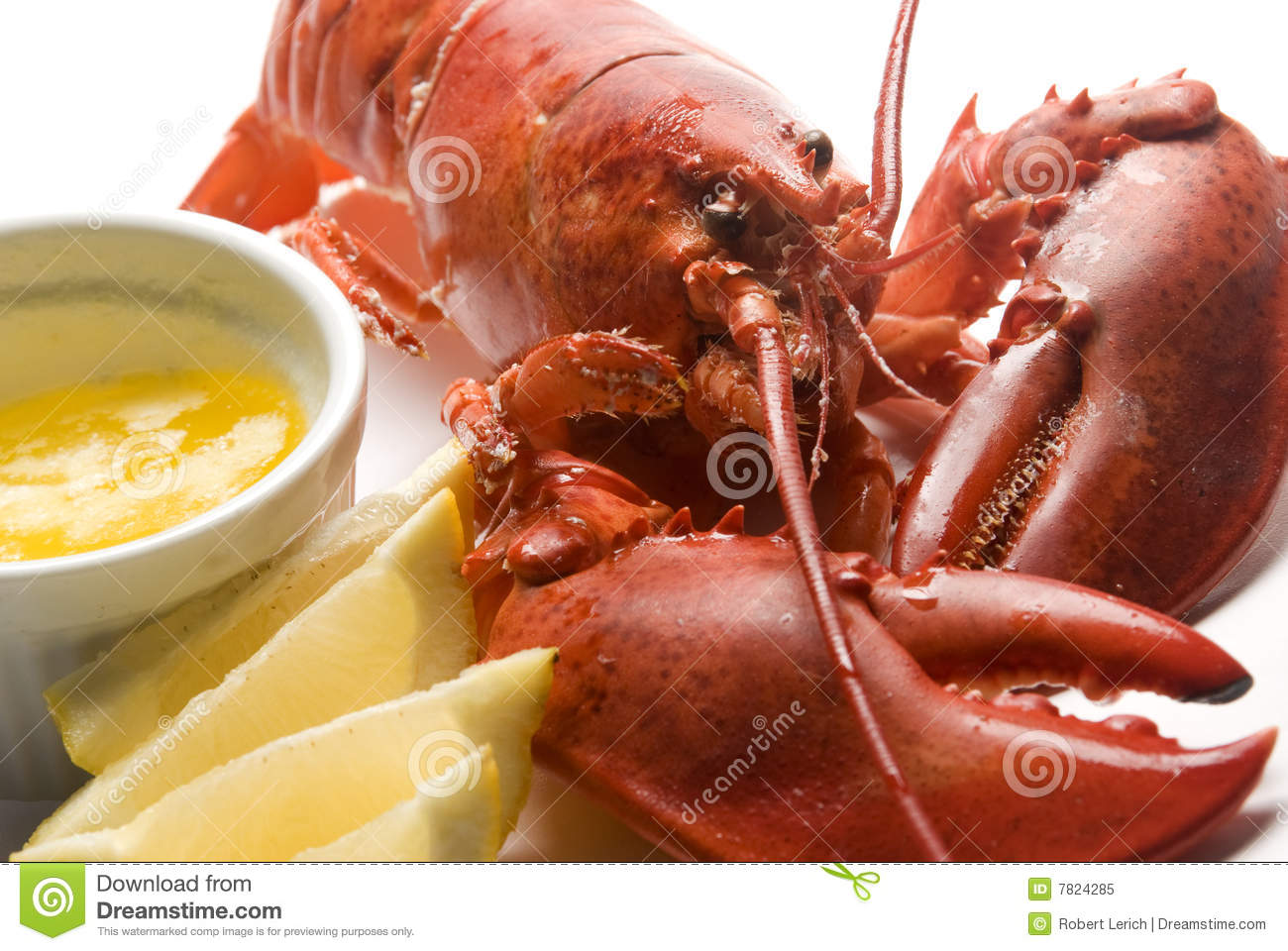 Cooked Lobster With Butter And Lemon Wedges Royalty Free Stock Photo ...