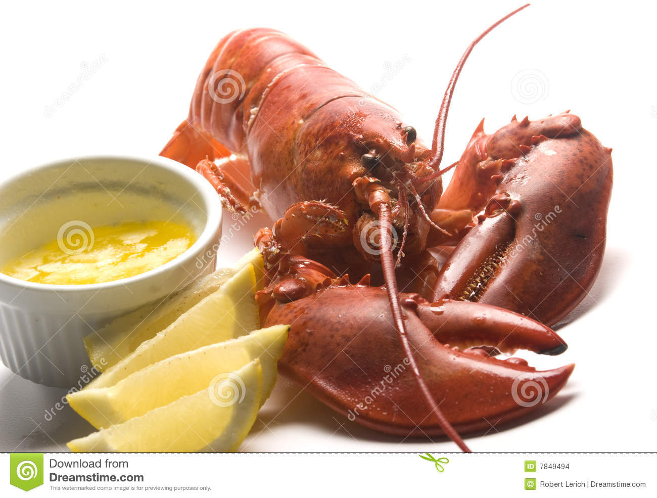 Cooked Lobster With Butter And Lemon Wedges Stock Images - Image ...