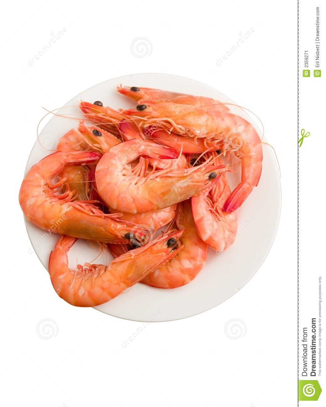 Clipart Cooked Shrimp Cooked prawns stock image