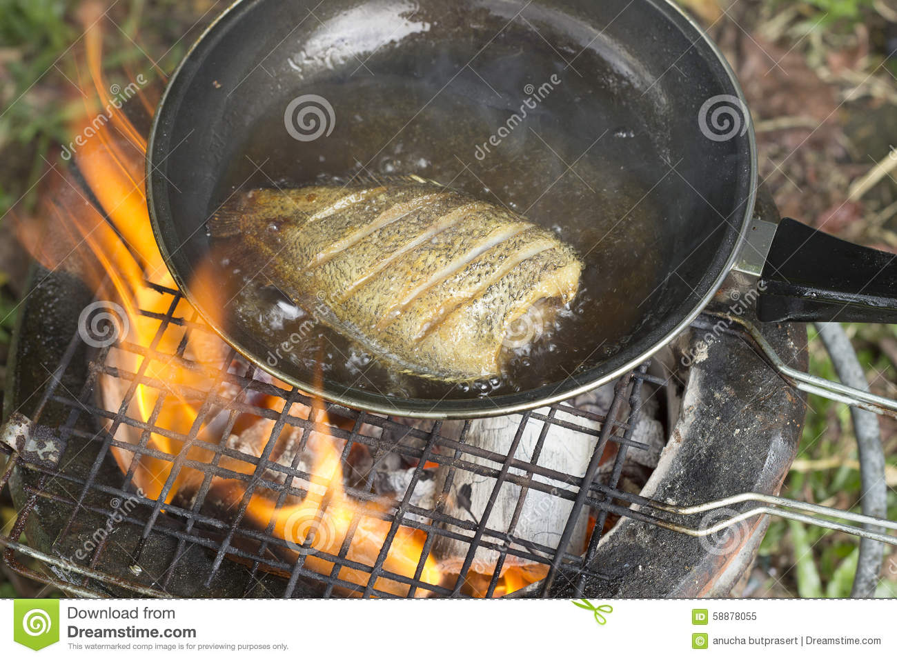 Cooking fry the fish on camping in the forest stock image for Oil for frying fish
