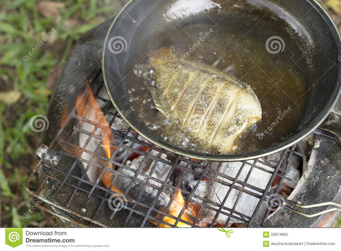 Cooking fry the fish on camping in the forest stock photo for Oil for frying fish