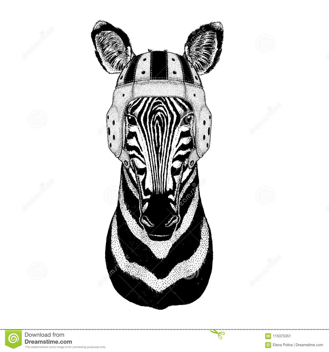 45a691df145f3 Cool animal wearing rugby helmet Extreme sport game Zebra Horse Hand drawn  illustration for tattoo