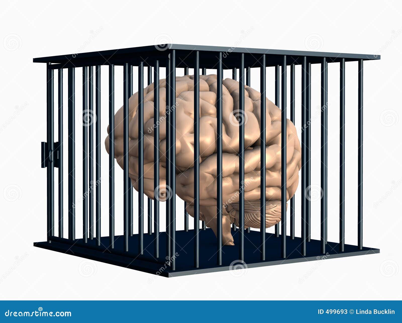 Coop ścinku mózgu człowieka blisko droga