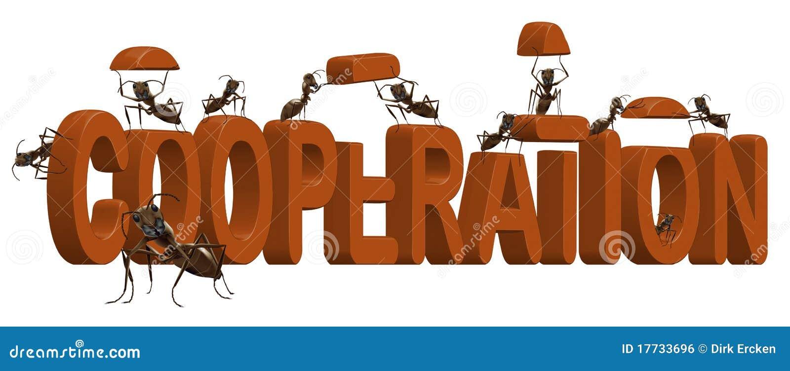 Cooperation teamwork and team spirit cooperate