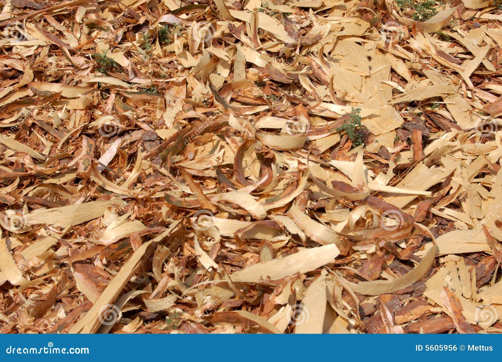 Copeaux en bois photo stock image du ch ne menuiserie - Copeaux de bois colores ...