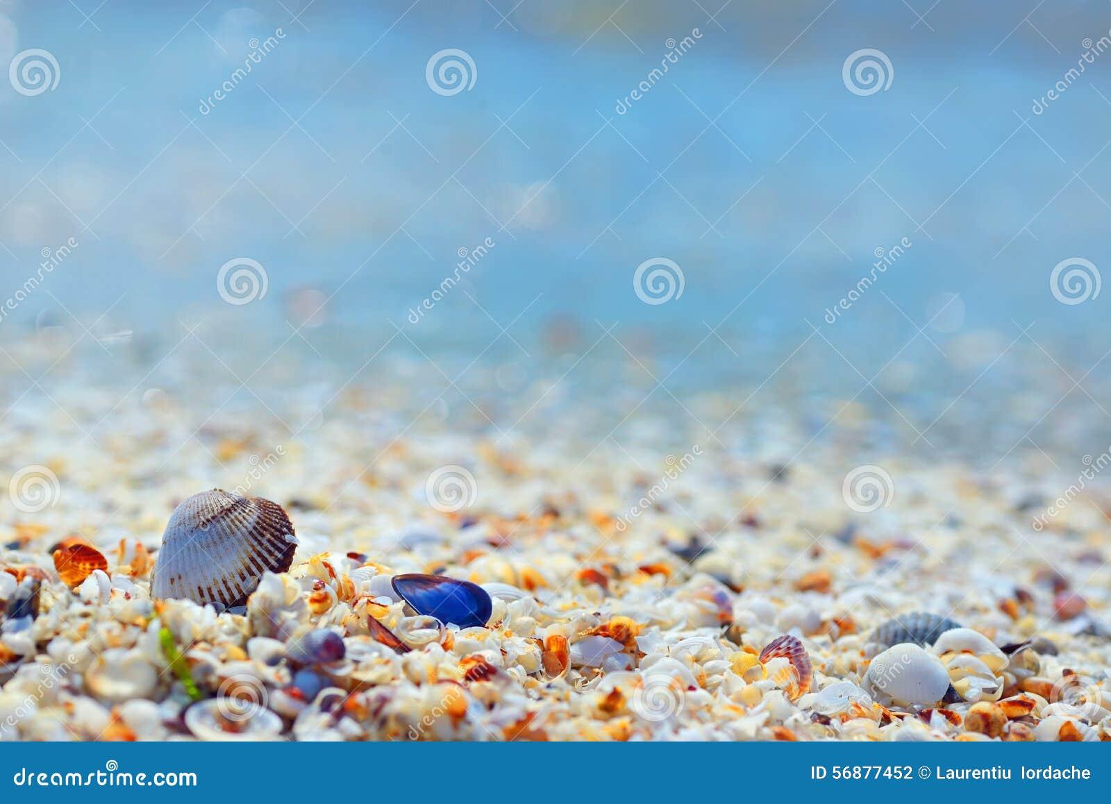 Coperture e sabbia