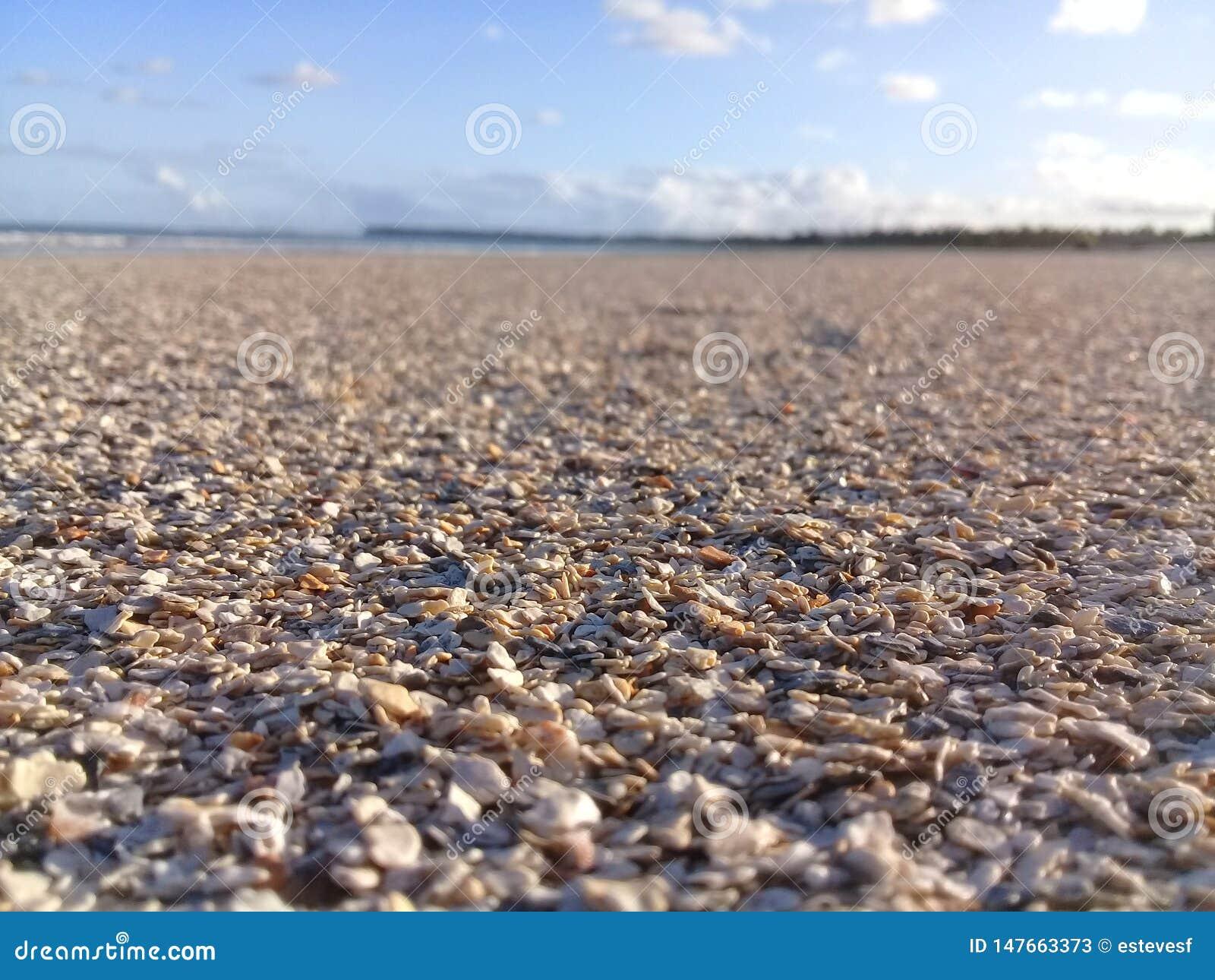 Coperture rotte sulla spiaggia