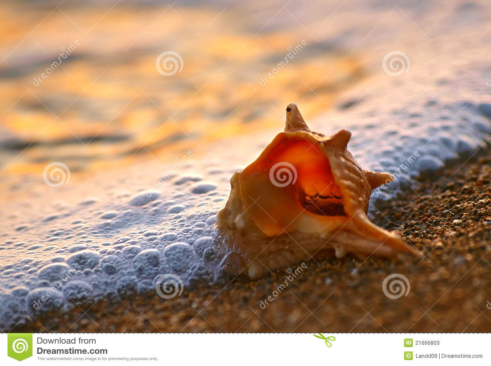 Coperture sulla spiaggia della sabbia