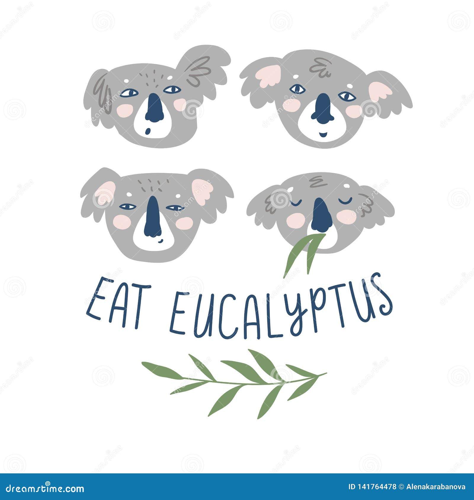Copie tirée par la main de vecteur avec des koala d isolement sur le fond blanc et lettrage - mangez l eucalyptus