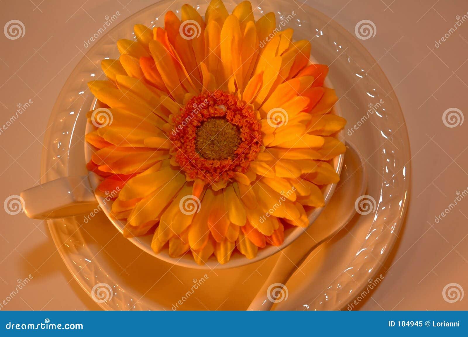 Copo de café com a flor dentro de 7