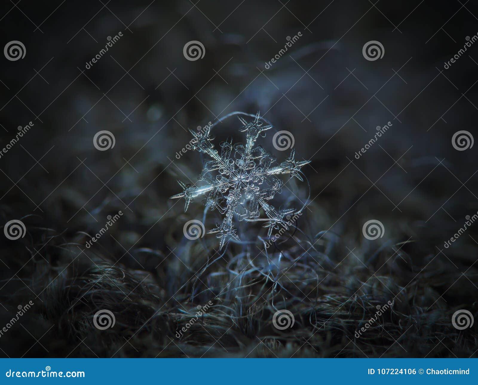 Copo de nieve real que brilla intensamente en fondo texturizado oscuridad
