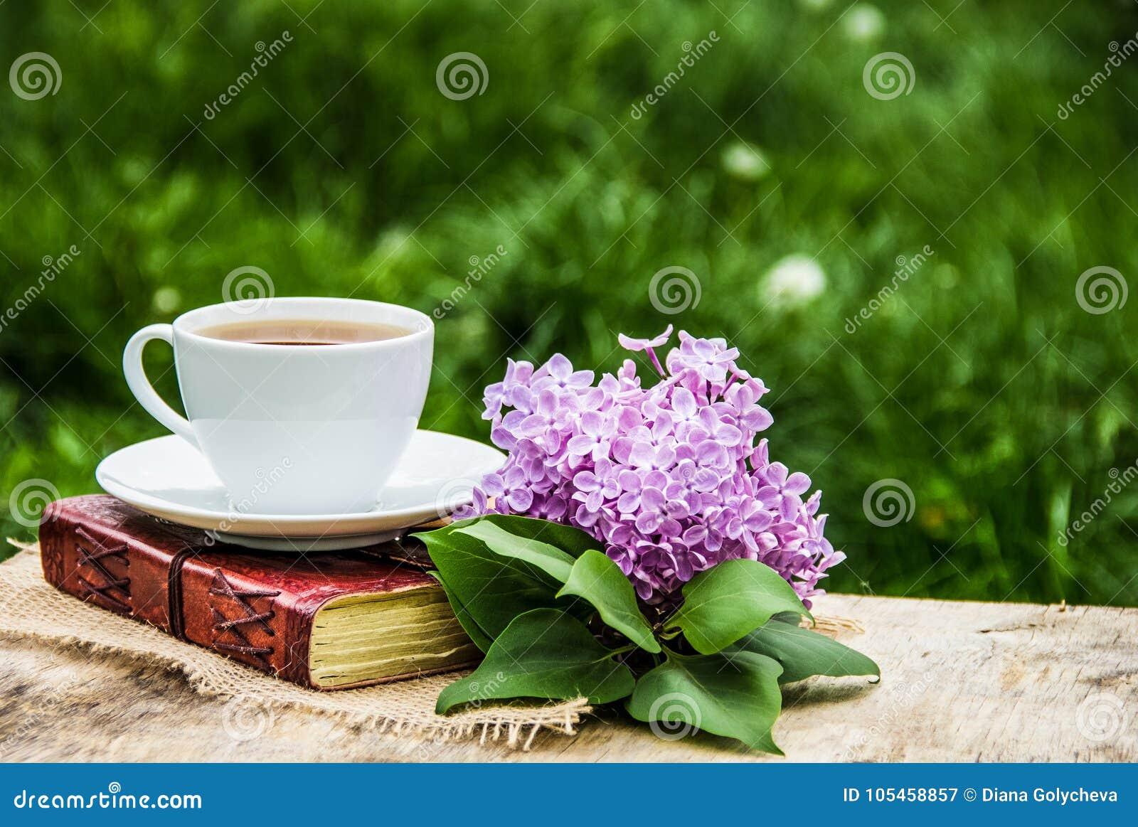 Copo do chá, do livro e do ramo quentes do lilás Jardim do chá na primavera Cosiness home