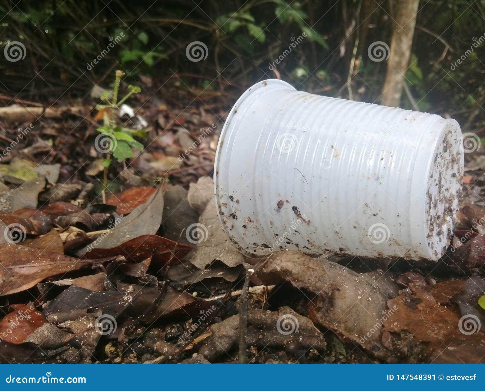 Copo pl?stico e a polui??o em manguezais