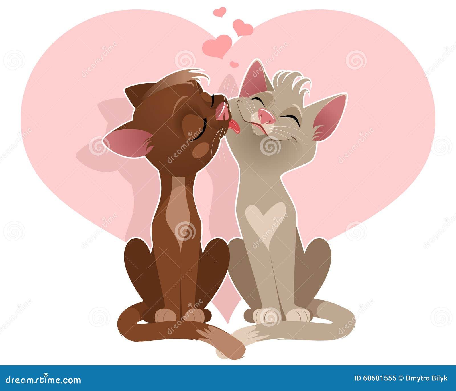 Coppie degli amanti dei gatti
