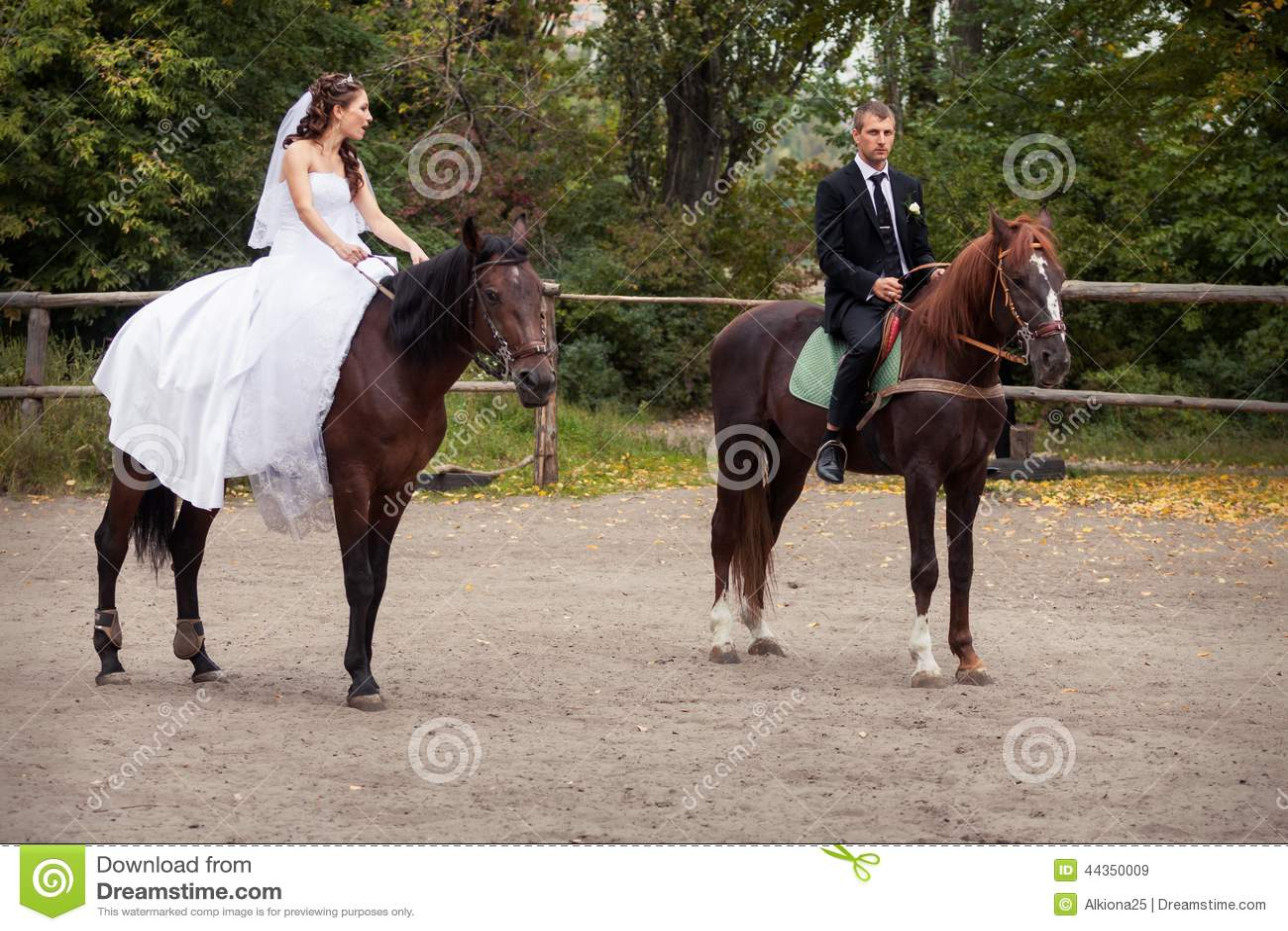 Coppie di nozze sui cavalli