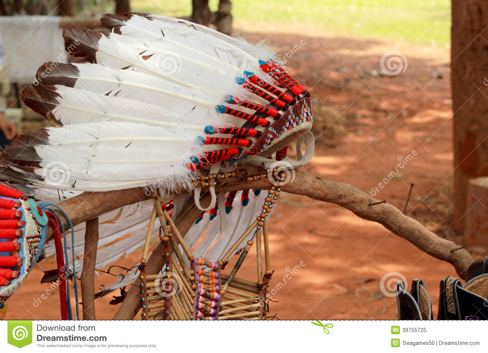 Copricapo del capo indiano del nativo americano fotografia - Fogli da colorare nativo americano ...