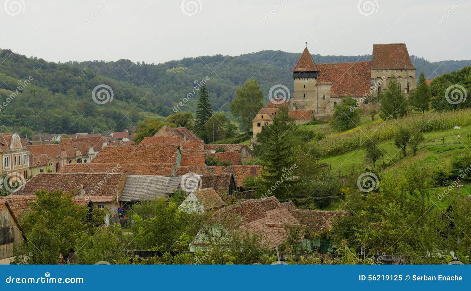 Copsa母马,特兰西瓦尼亚,罗马尼亚国家风景