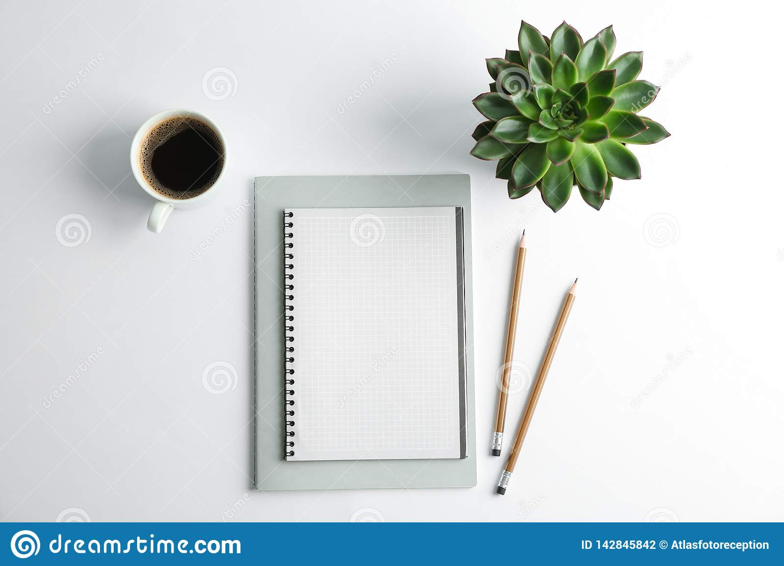 Copybooks, cup of coffee, pencils and succulent plant on white background