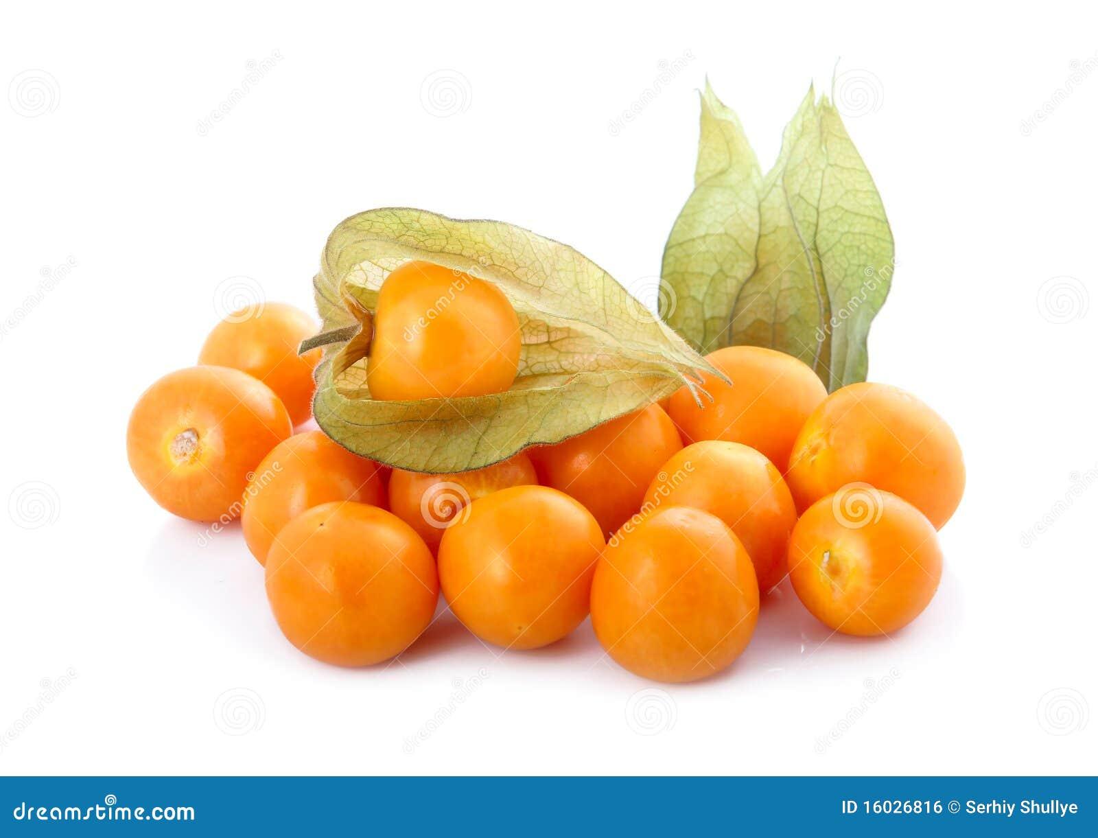 Coqueret comestible physalis d 39 isolement image libre de droits image 16026816 - Comment reconnaitre physalis comestible ...