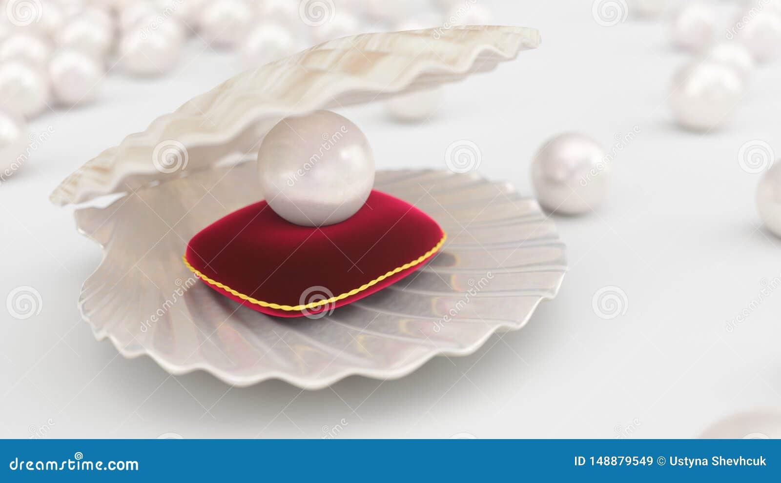 Coquillage avec des perles ? l int?rieur sur l oreiller rouge de velours Gemmes, les bijoux des femmes, perles de nacre Pour votr