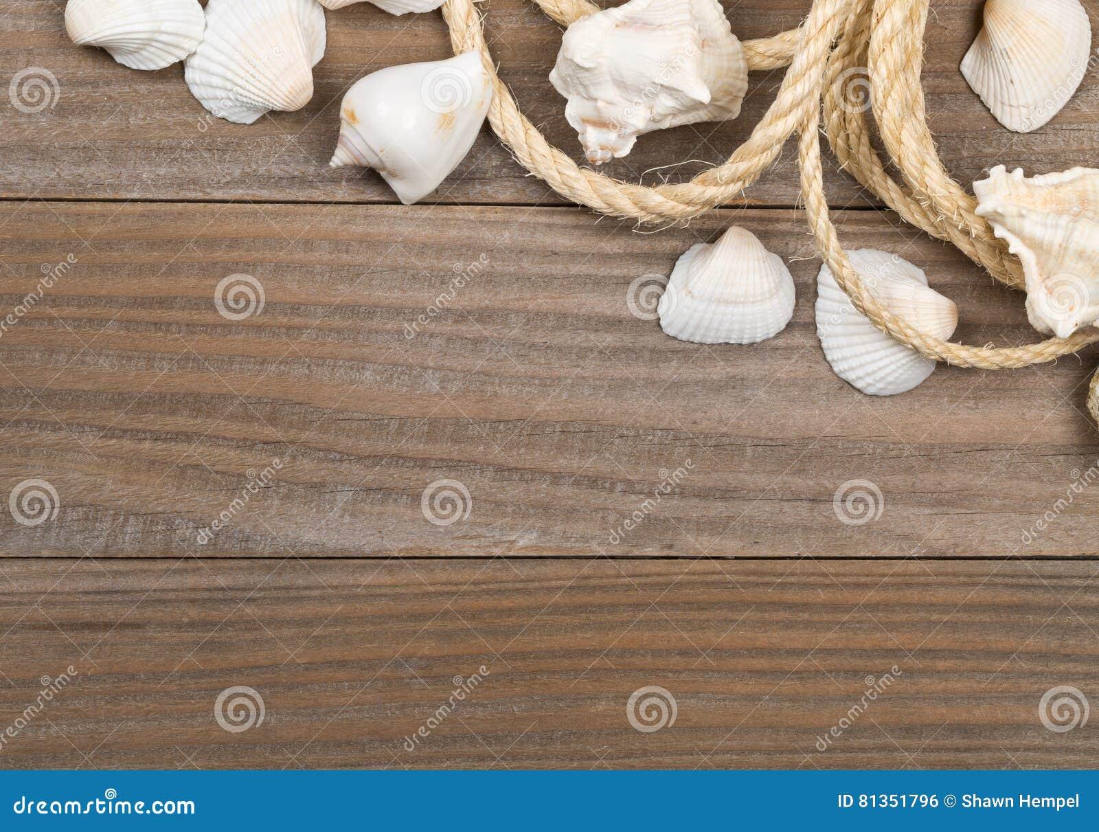 Coquillages avec la corde sur les conseils en bois bruns