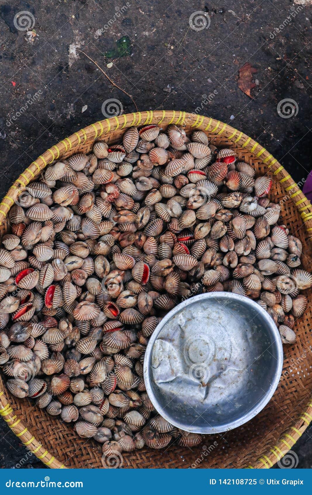 Coquilles sur le marché traditionnel