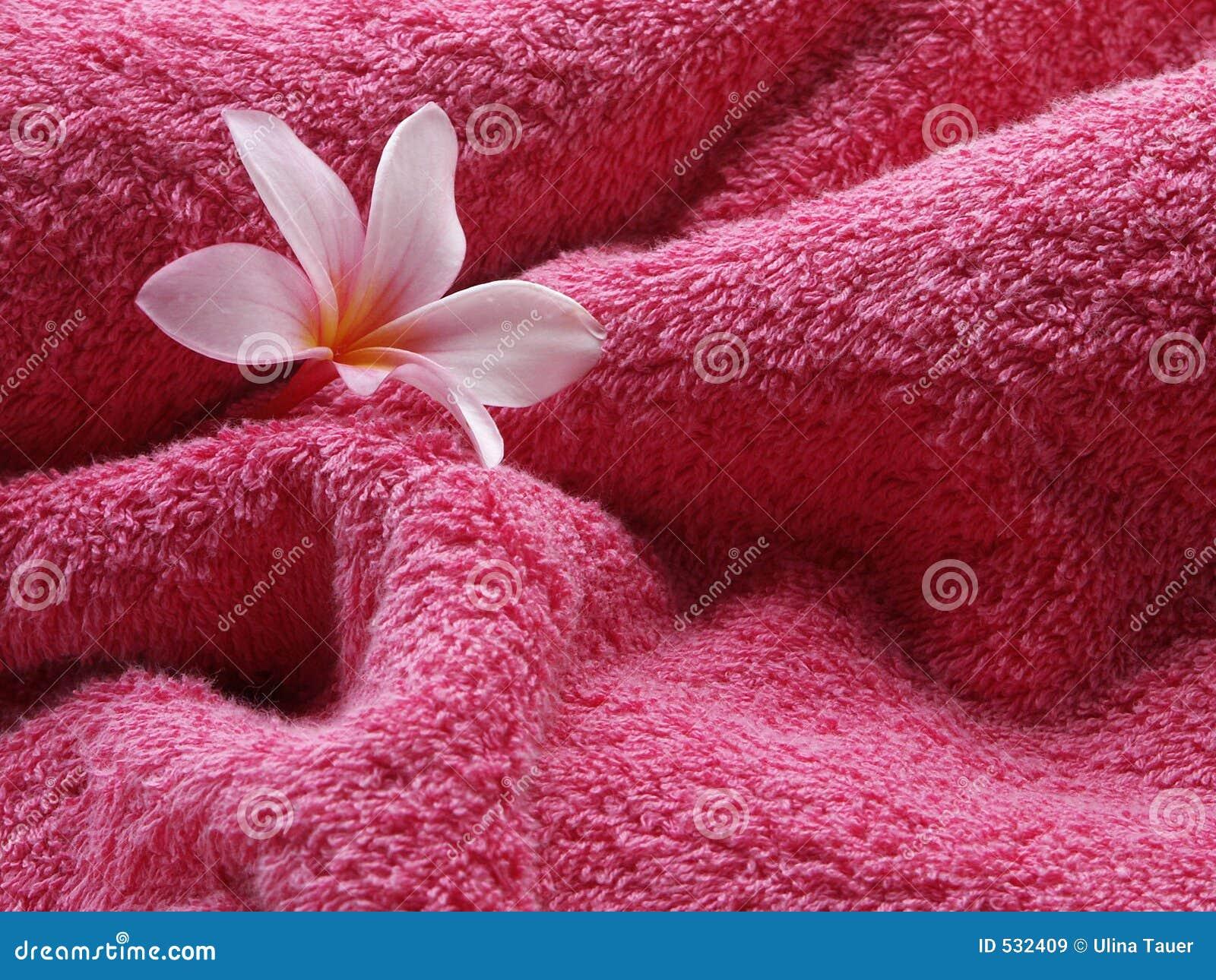Cor-de-rosa da sensação!