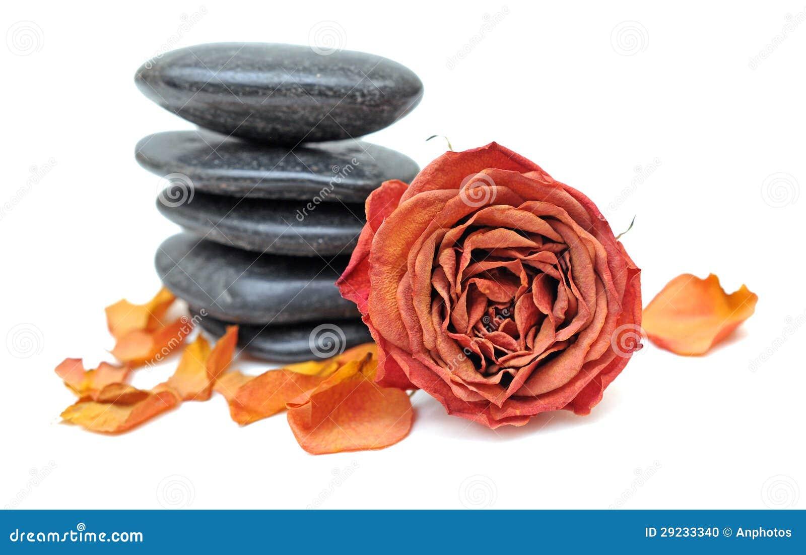 Download Cor-de-rosa E De Pedra Secados Foto de Stock - Imagem de valentine, morte: 29233340