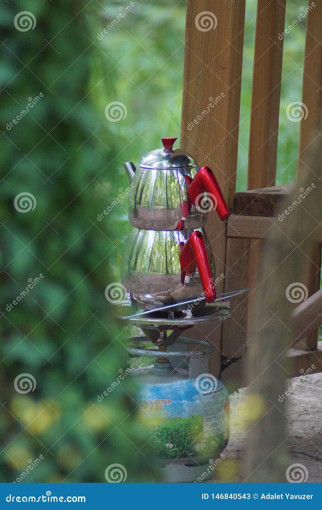 Cor verde e chá na floresta