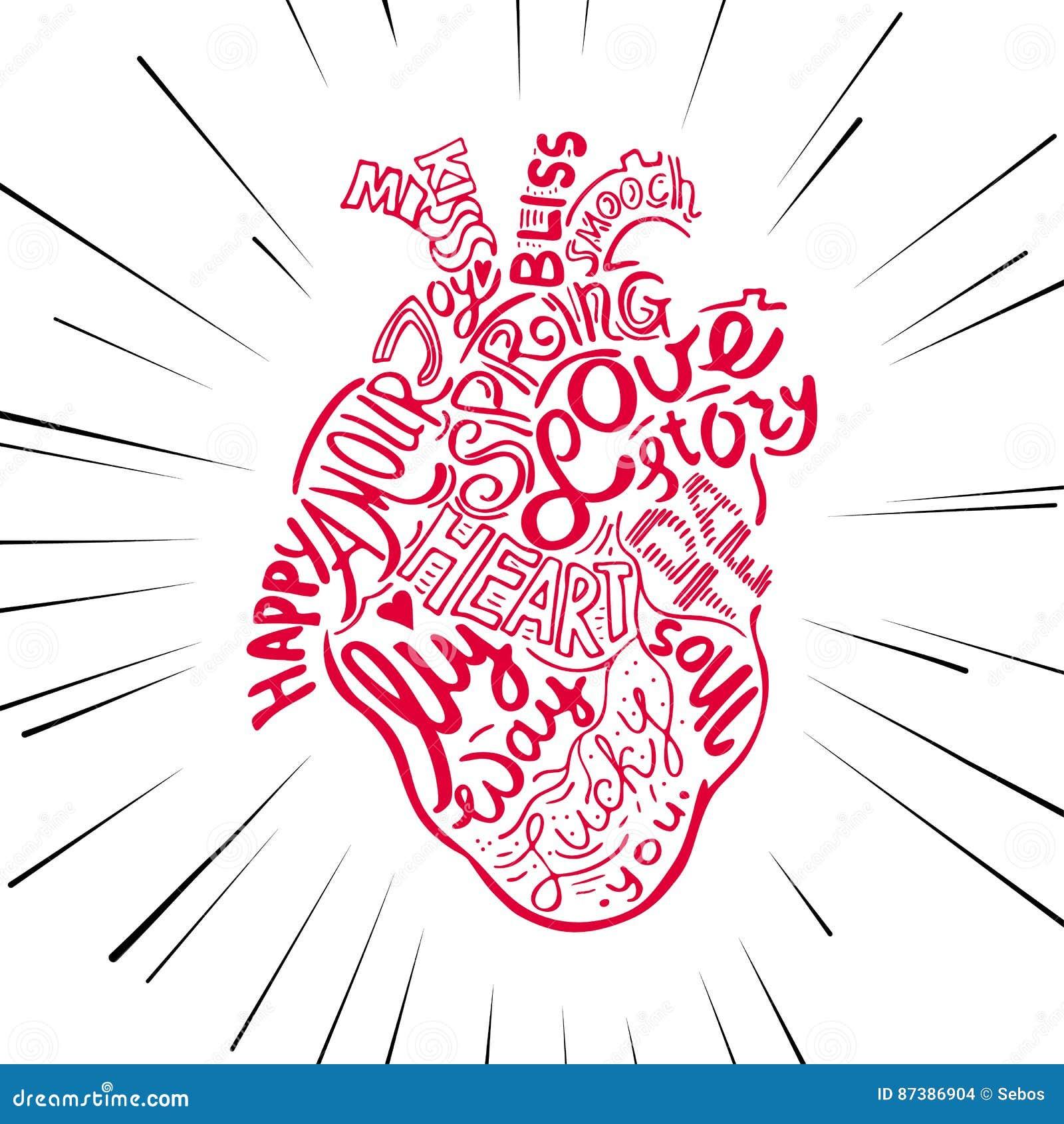 Coracao Anatomico Do Esboco Do Desenho Da Mao Rotulando A