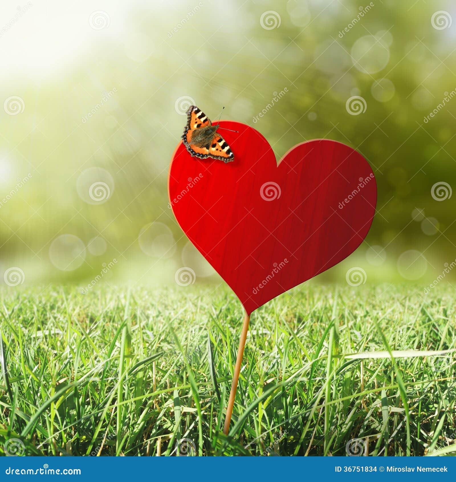 Coração com borboleta