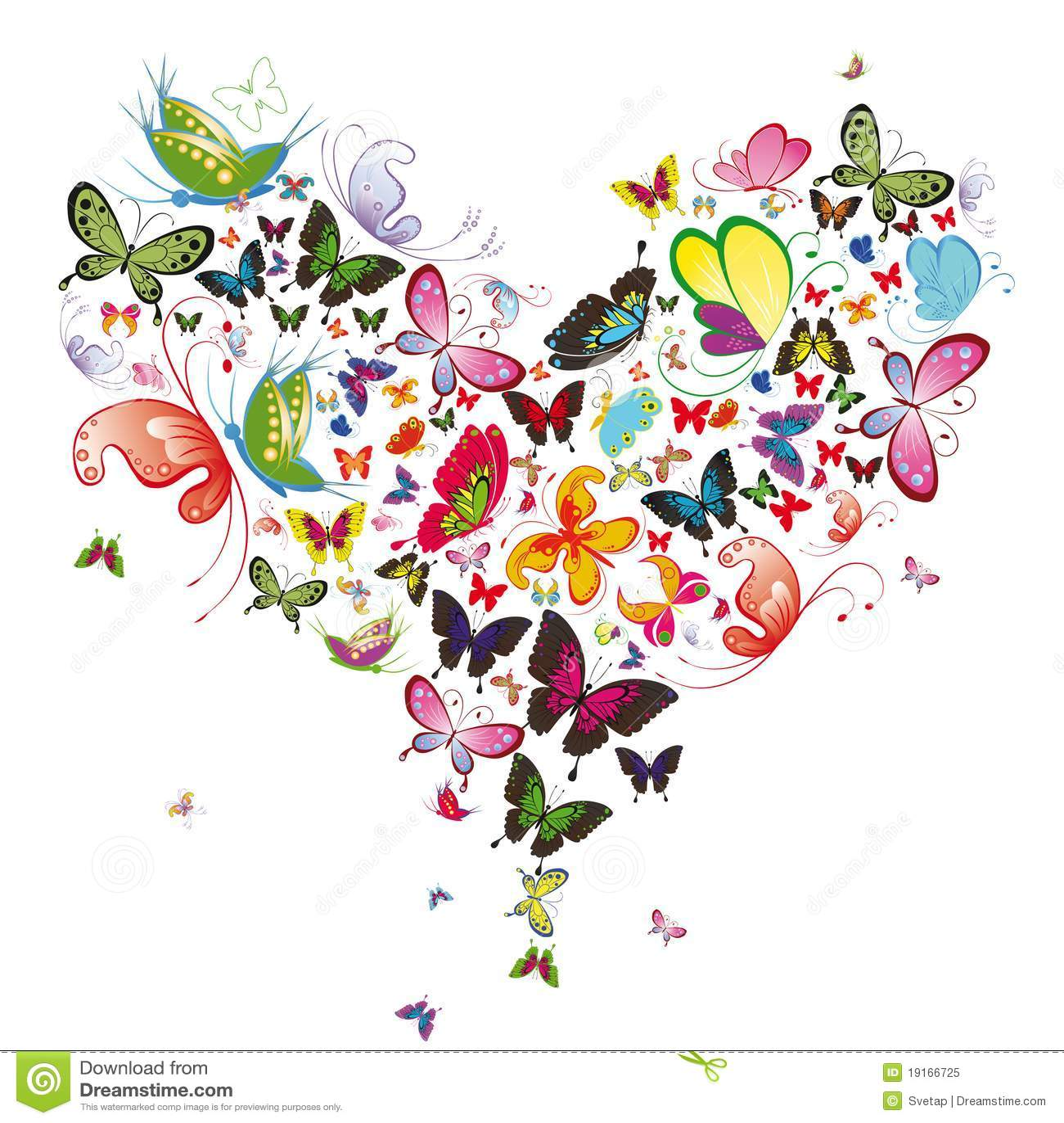 Coração da borboleta
