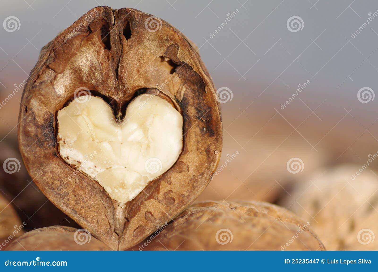 Coração da noz