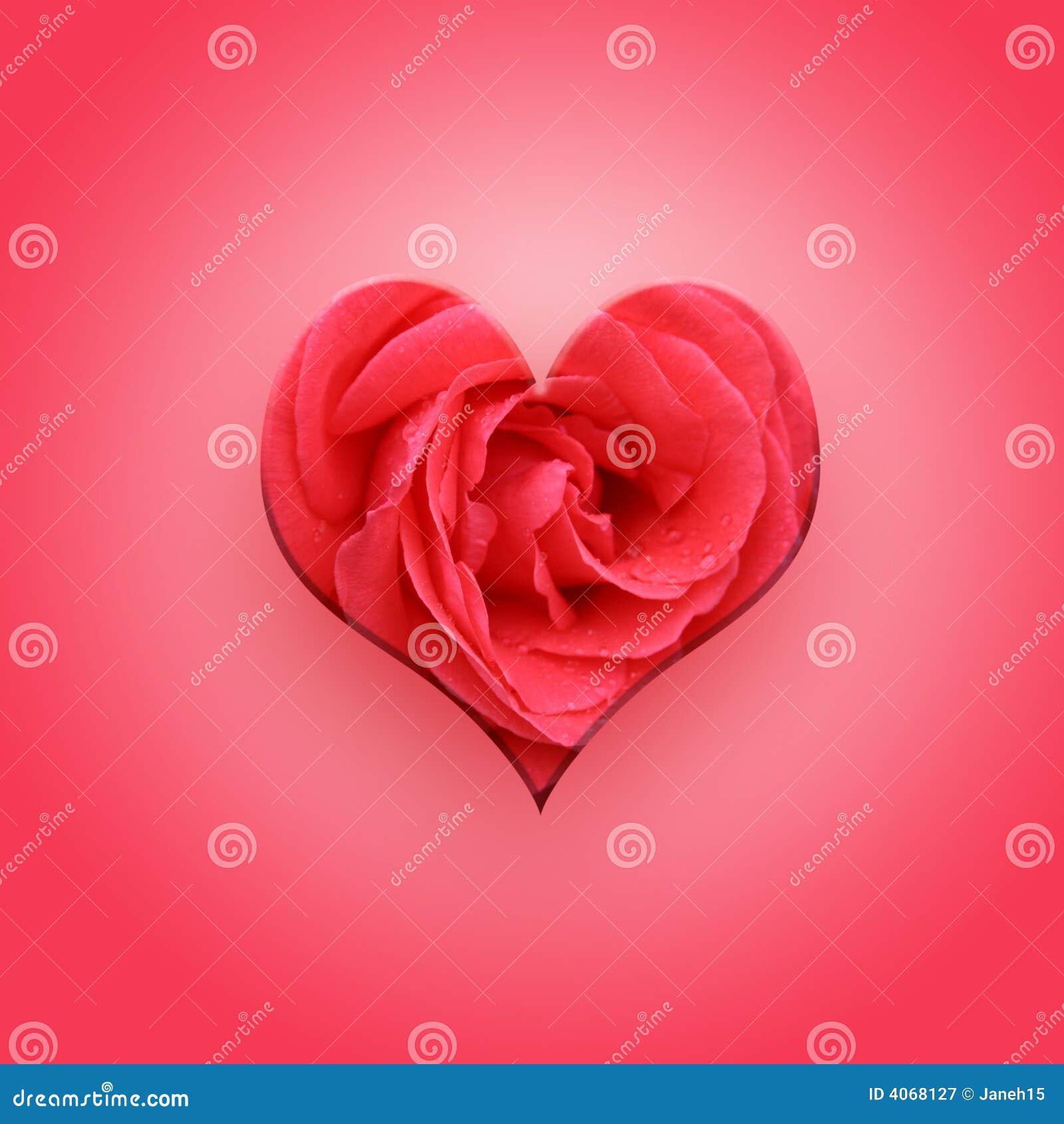 Coração do Valentim na cor-de-rosa