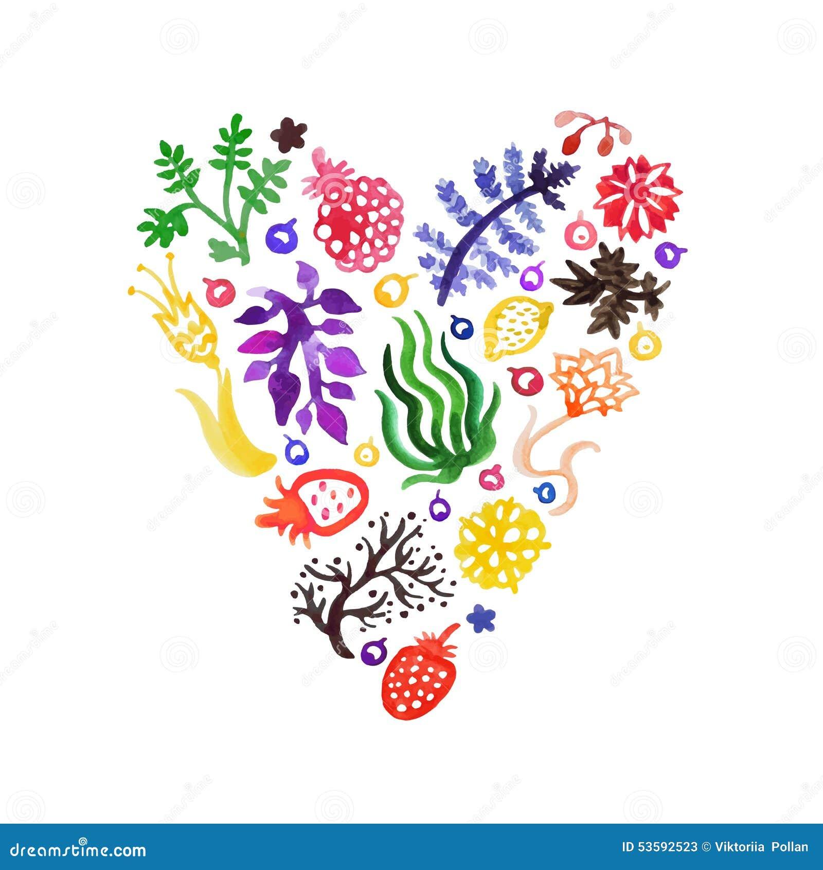 Coração do vetor da natureza da aquarela com as flores, as bagas e as plantas (coloridos) Aperfeiçoe para convites e outro projet