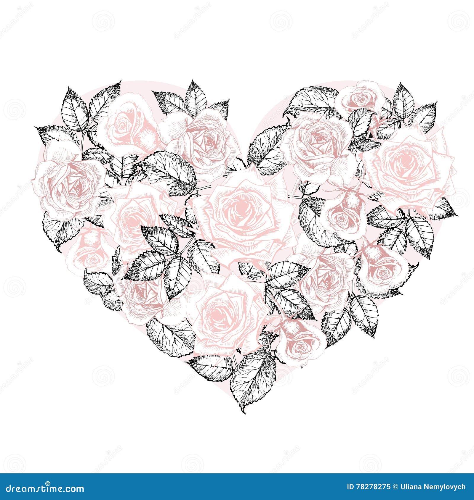Coração do vetor das rosas Flores gravadas vintage tiradas mão do estilo Cor da rosa da cor pastel