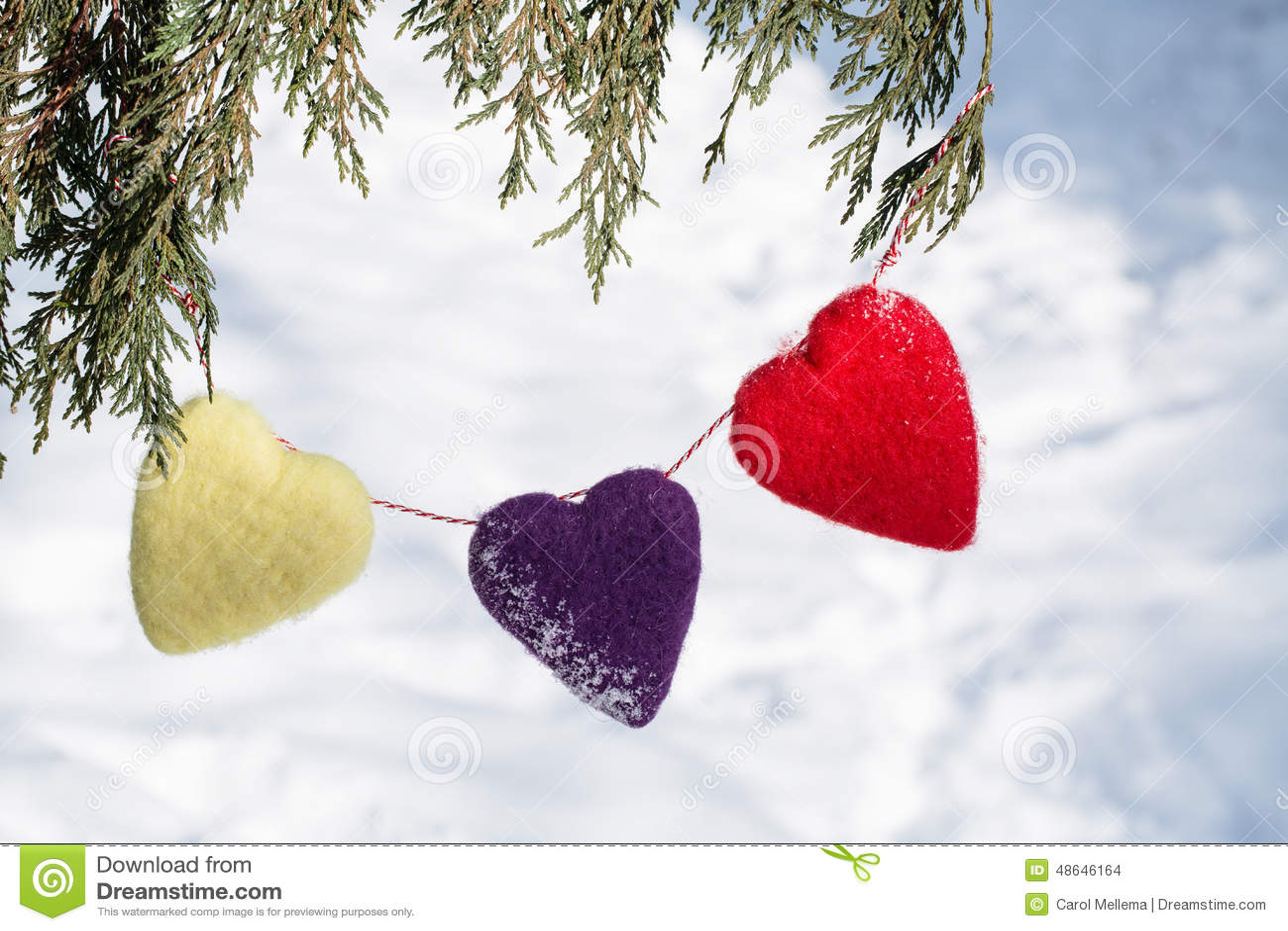 Corações do dia de Valentim que penduram do pinheiro