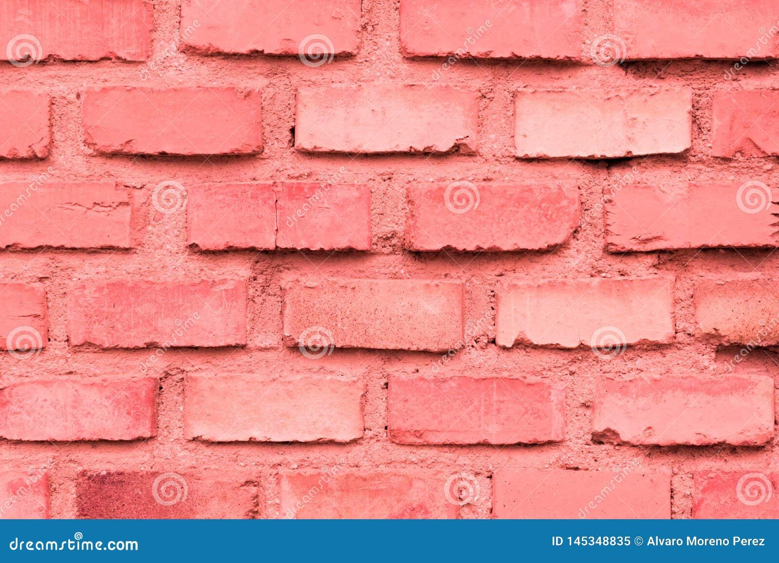 Coral da parede de tijolo
