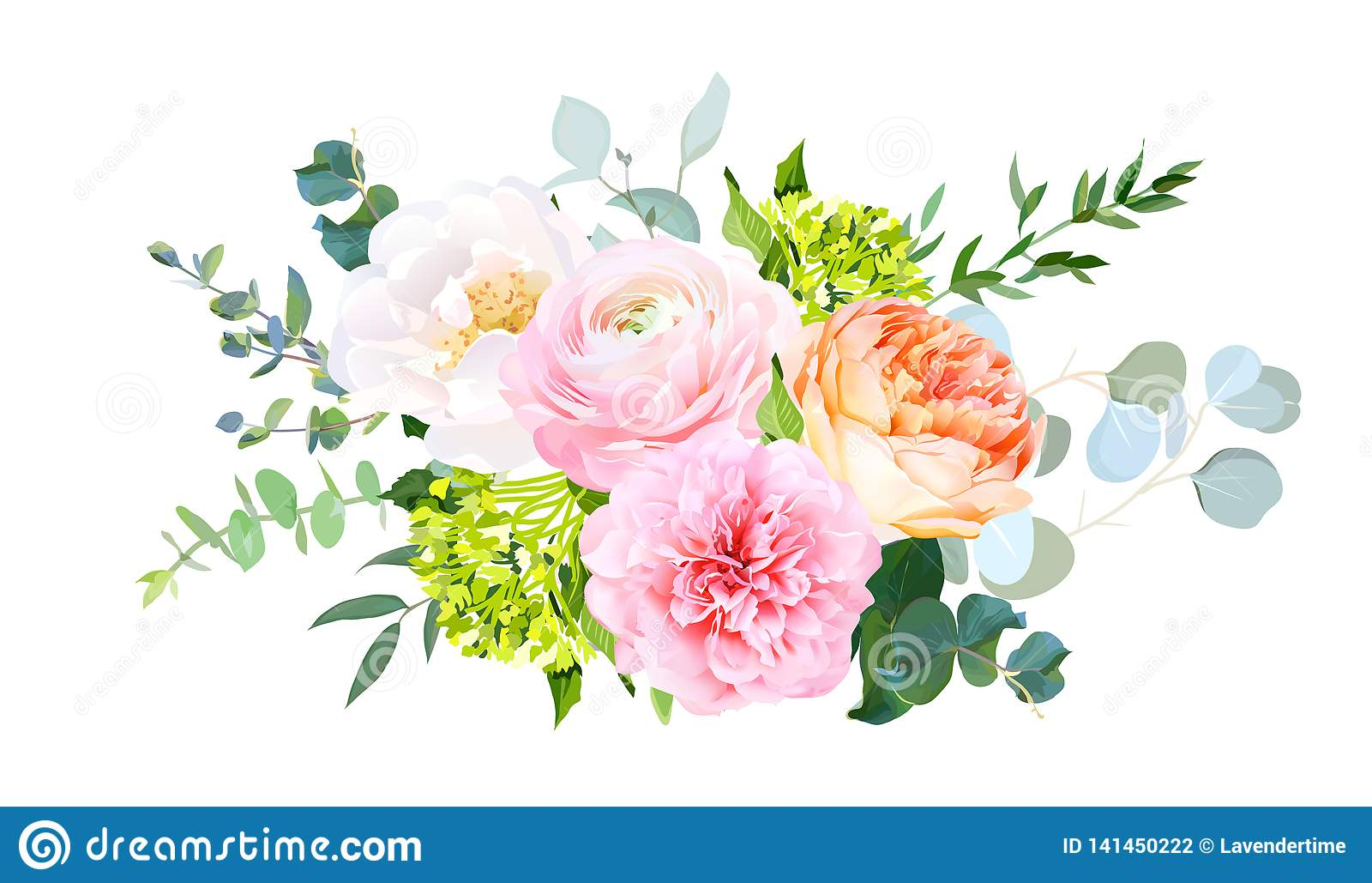 Coral Juliet Garden Rose Pink Ranunculus Peony Green Hydrangea Eucalyptus Stock Vector Illustration Of Boho Collection 141450222
