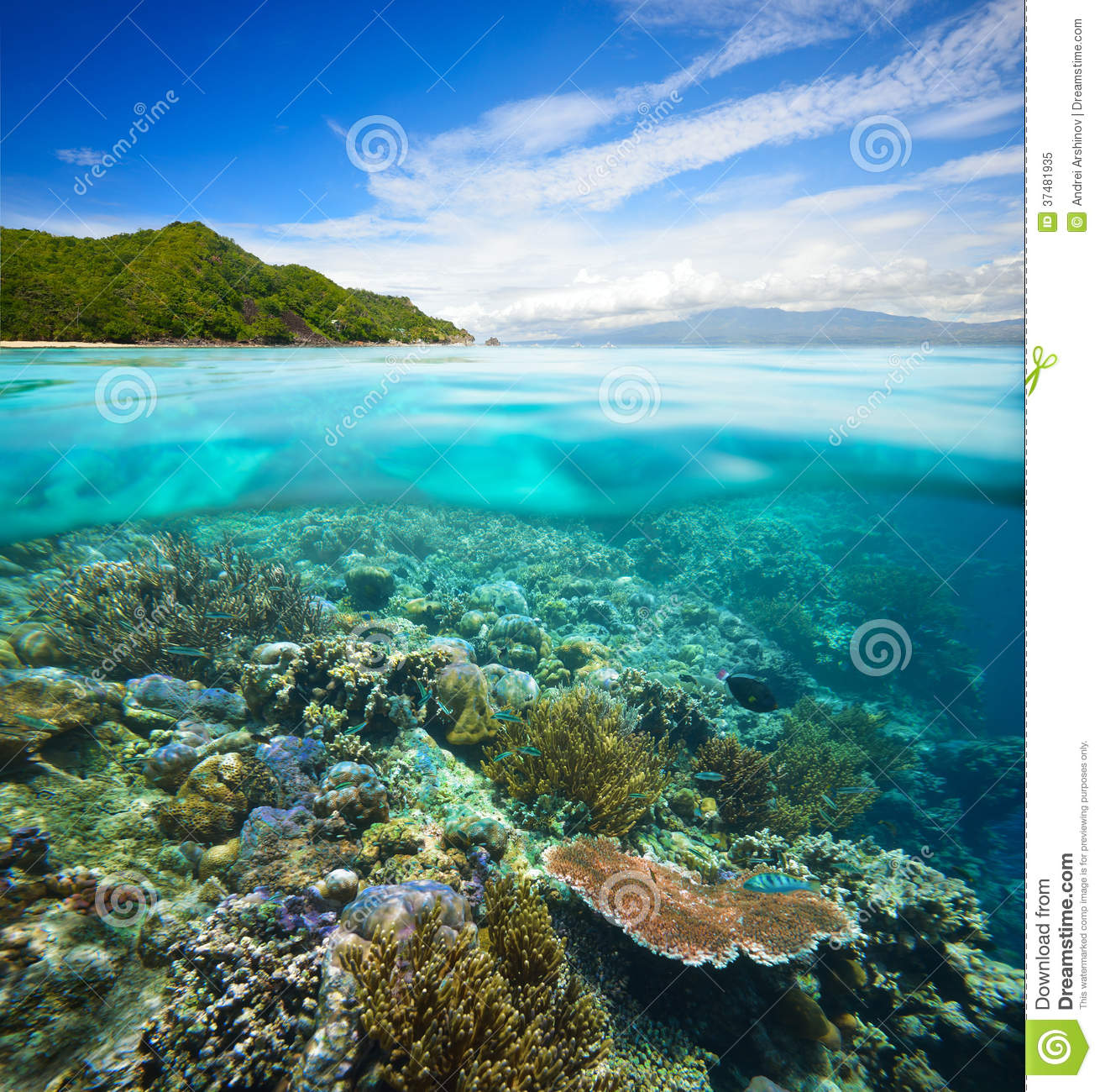 Coral Reef Background: Coral Reef On Background Of Cloudy Sky And Island Stock