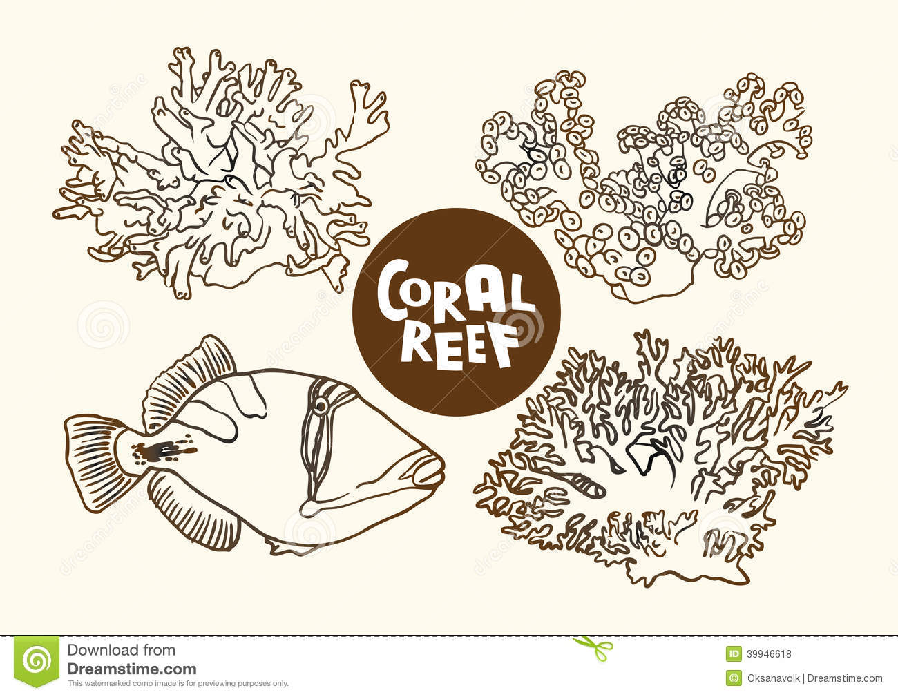 Coral reef fish and corals vector contour drawing