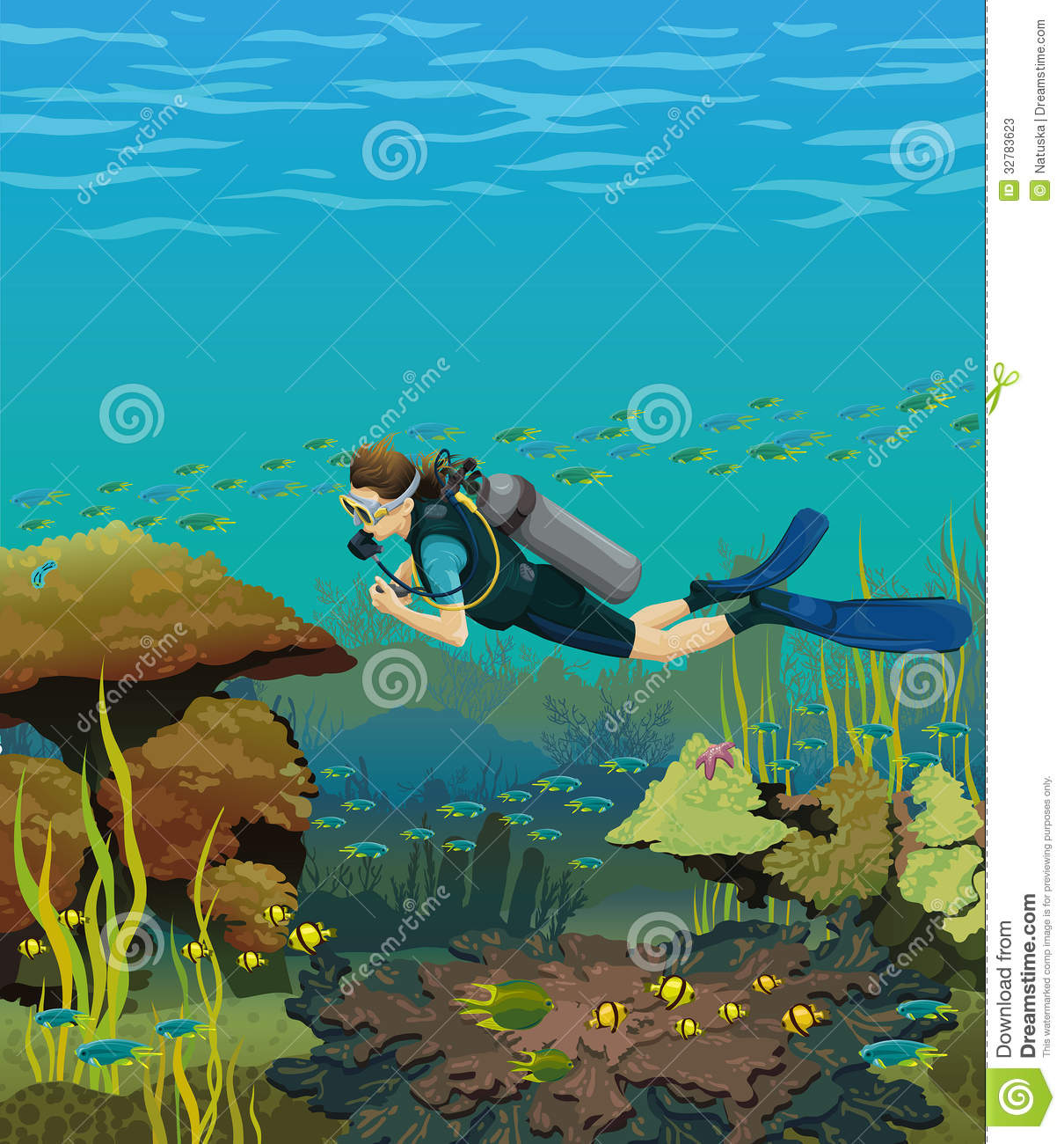 Coral Reef Background: Coral Reef And Scuba Diver Stock Photos