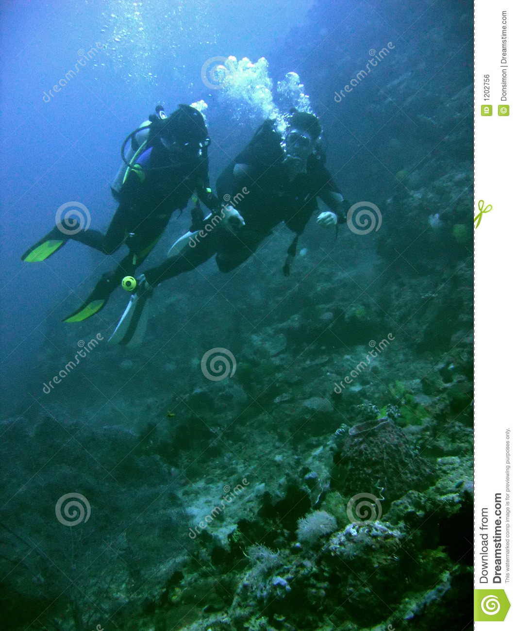 coral reef scuba diving couple philippines