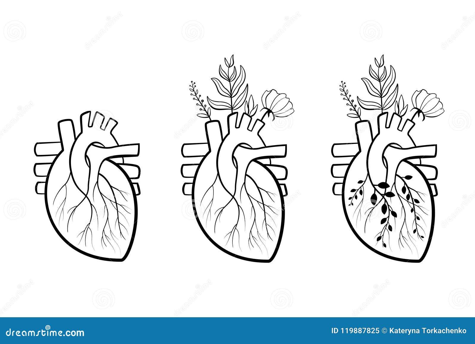 Corazón Bloming Con Las Flores Ilustración del Vector - Ilustración ...