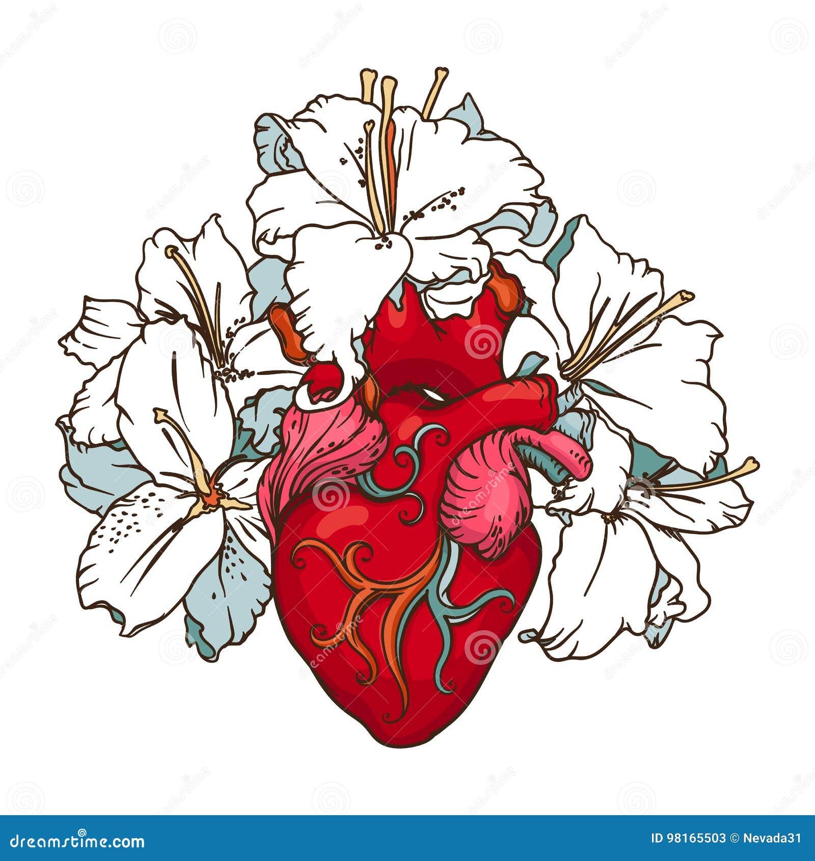Corazón Con Los Lirios Blancos En Estilo Romántico Concepto